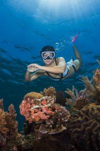 Snorkeling Freediving Labuan Bajo Komodo Fenides Phinisi Liveaboard 2